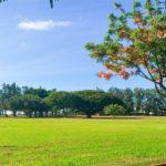 kaiaka-bay-beach-park