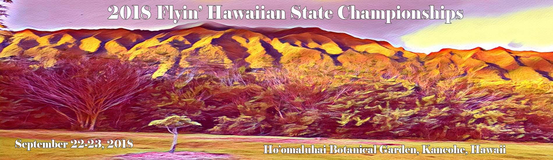 2018 Flyin' Hawaiian State Championships Banner