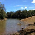 Wahiawa Freshwater Recreation Area Pic
